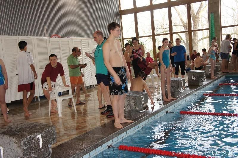 schwimmwettkampf-2013-001